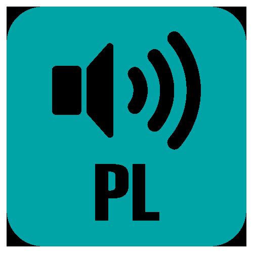 odczyt wartości pomiaru w języku polskim